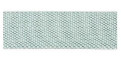 Tassenband 40 mm pastel munt