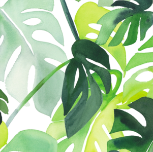 Gelamineerd katoen Philodendron